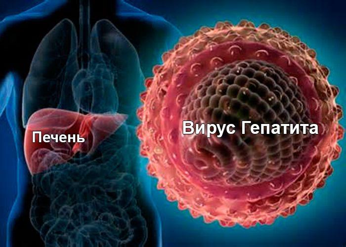 Можно ли есть при повышенном билирубине в крови