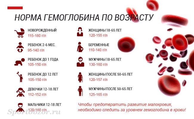 Какая норма гемоглобина у человека должна быть