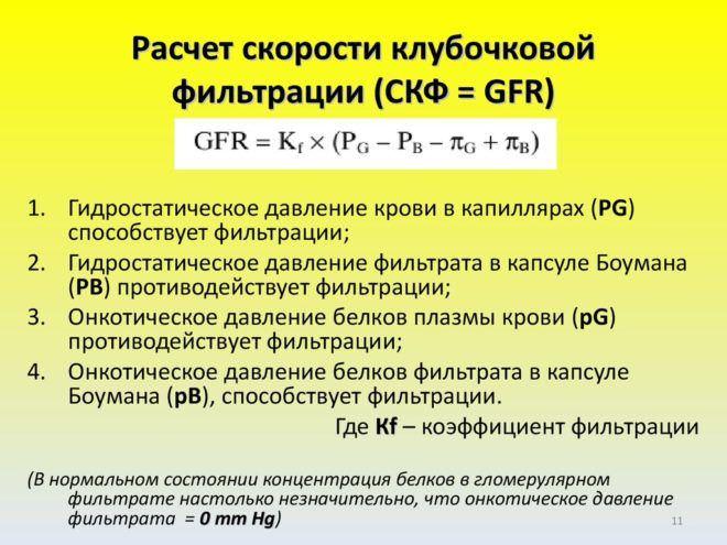 Скф по формуле ckd epi