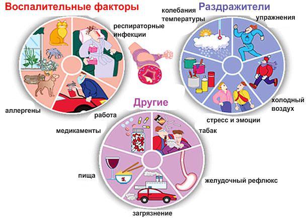 Факторы, провоцирующие развитие астмы