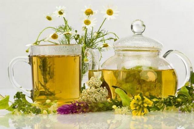 Лекарственные растения - эффективные средства лечения кашля