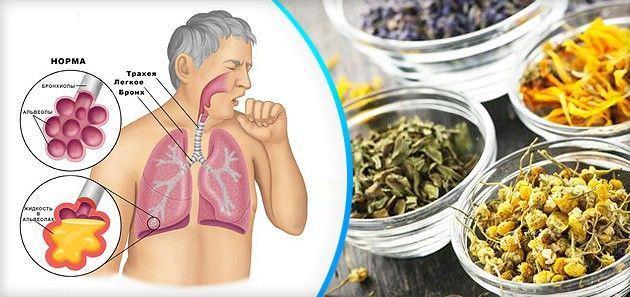 Способы нетрадиционного лечения сухого кашля также обладают отличной эффективностью.