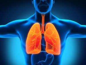 Подробно о туберкулезе