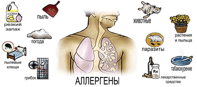 Факторами, провоцирующими длительный кашель, могут послужить аллергены