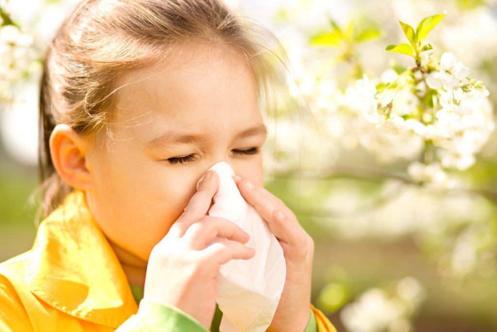 Кашель и насморк без температуры – причина в аллергии