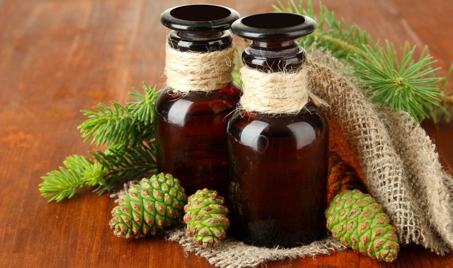 лечение кашля зелеными шишками