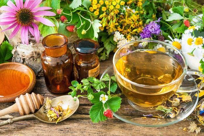 Лечение от кашля народными средствами: лекарственные отвары и настойки