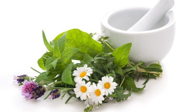 Лечение травами известно издавна
