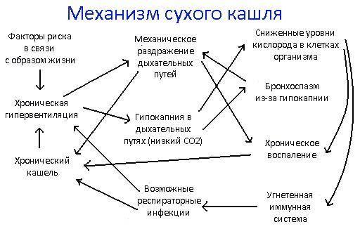 Механизм развития сухого кашля