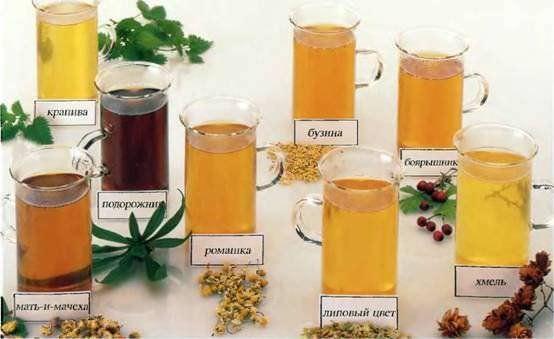 Народное эффективное средство от кашля – это напитки на основе целебных трав