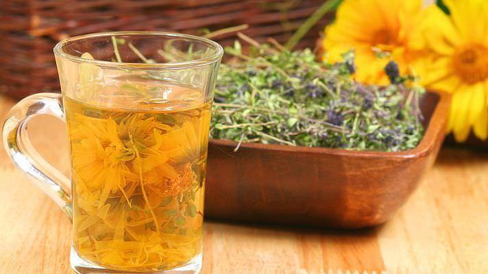 Отвары из лекарственных трав избавляют от кашля