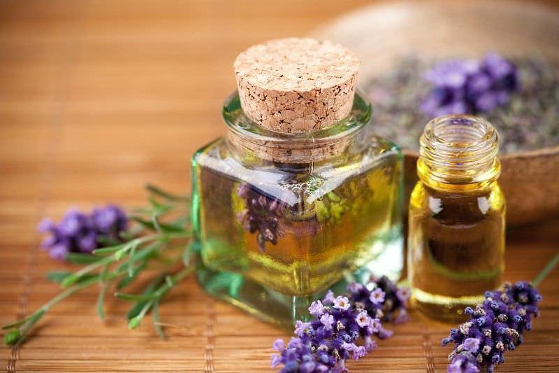 Шалфейное масло- отличный помощник в избавлении от сухого кашля
