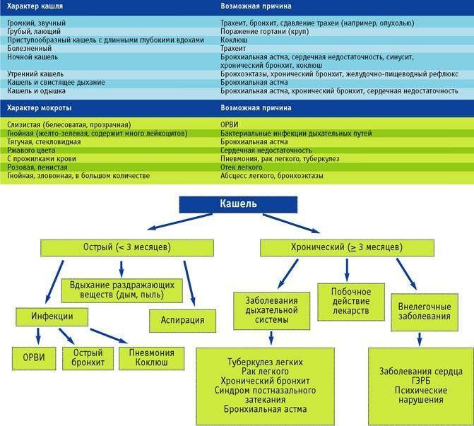 Схема, определяющая характер проявления кашля и влияющие причины