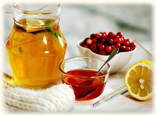 Теплый растительный отвар - помощник в лечении кашля