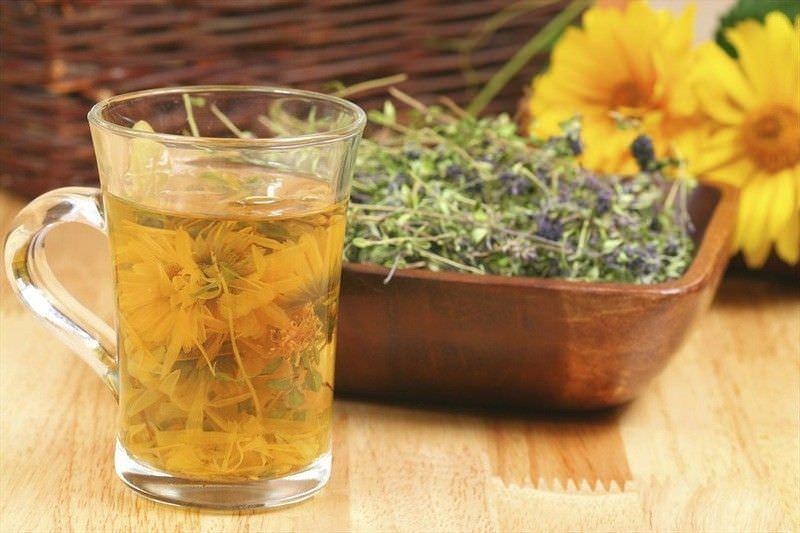 Травы,-применение в лечебных целях. Фото.