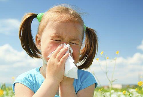 У девочки аллергия на пыльцу.