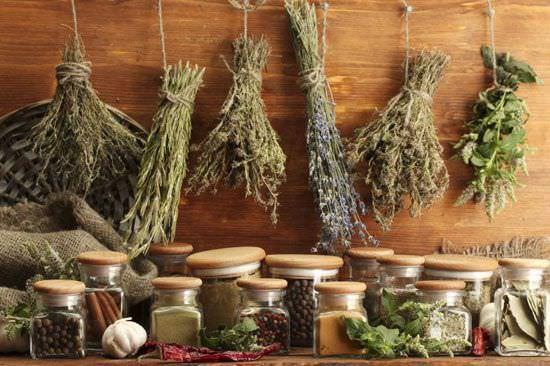 Использование лекарственных трав и эфирных масел против сухого и влажного кашля