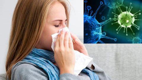 Становится причиной кашля могут вирусы и бактерии
