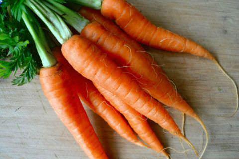 Морковь, мед