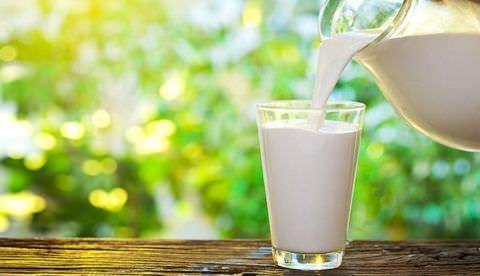 Польза молока неоспорима