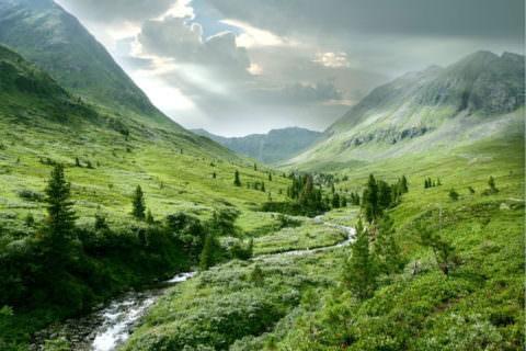 В горах можно и здоровье поправить, и отдохнуть душой