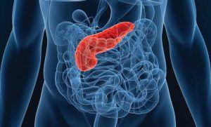 Рак поджелудочной железы последние дни жизни